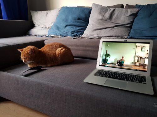 online-yogalessen-voor-thuis